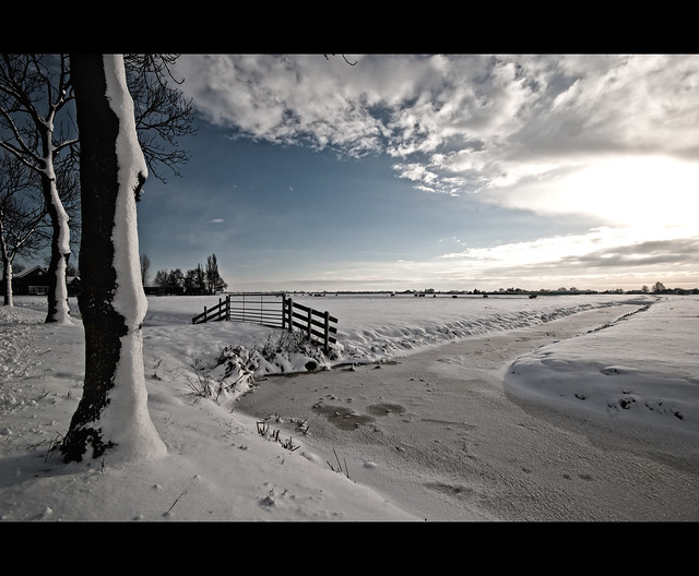 Winter landscape (Explore #8!)