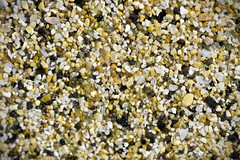 Sand from Hapuna Beach, Hawai'i