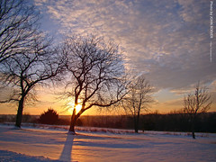Winter Sunset in JoCo, 14 Jan 2011