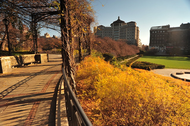 CENTRAL PARK / Autumn Landscape - Manhattan, New York City - 12/02/10