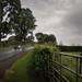 Small photo of Escucha la lluvia