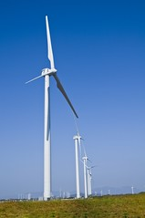 Walmart de Mexico renewable wind energy