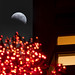Lunar Eclipse, San Francisco, 2010 by exxonvaldez