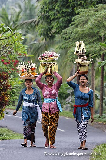 Bali experience : women carrying offerings