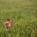 Kids and Flowers by chris.merwe