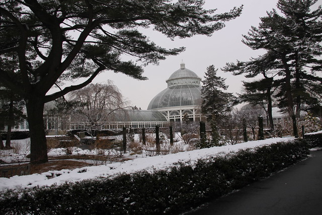 The New York Botanical Garden In Winter The Bronx Flickr Photo Sharing