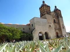 Oaxaca (Mexico)