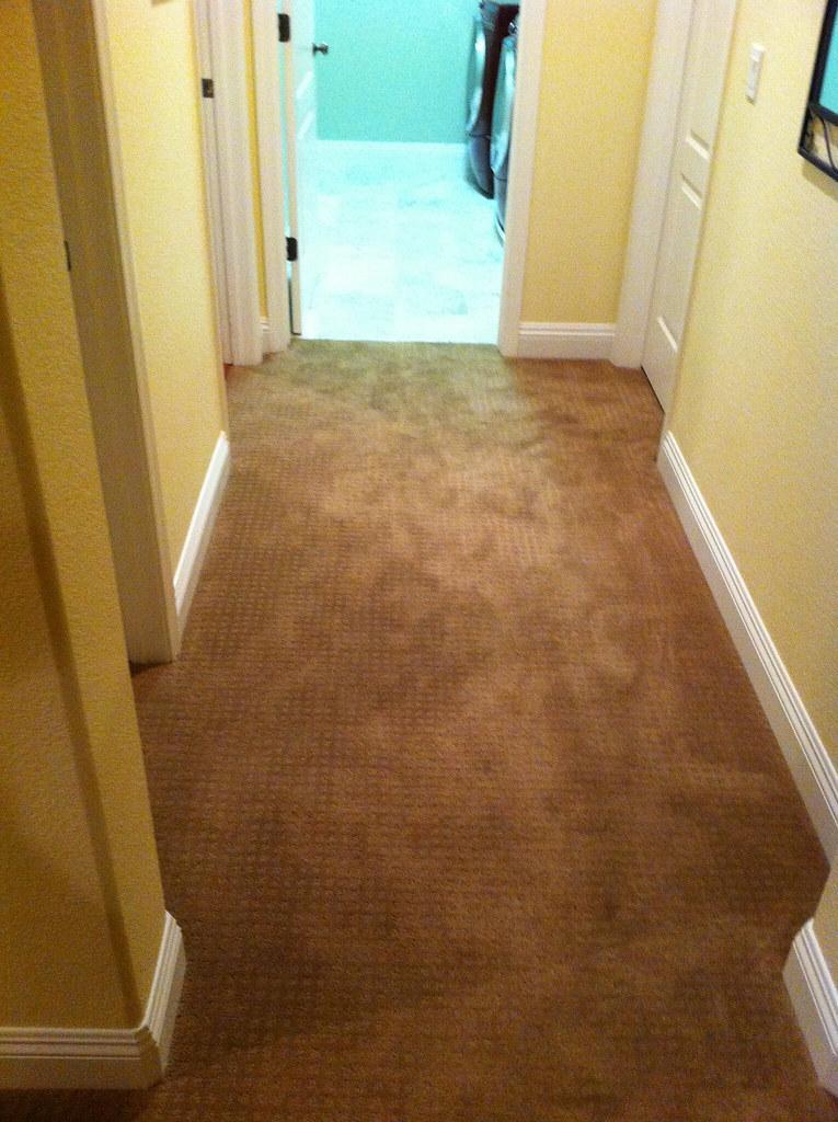 Shaw Laminate Flooring Shaw Laminate Beech Laminate Floor