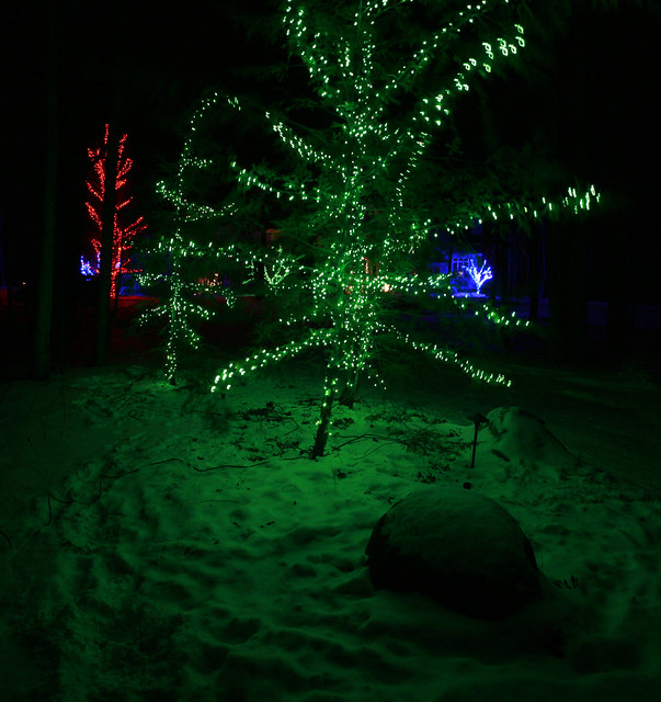 Red blue green christmas tree lights flickr photo sharing