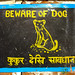 Beware of Dog - Annapurna Circuit, Nepal