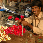 Flower Vendor in the Market of Bikaner, India
