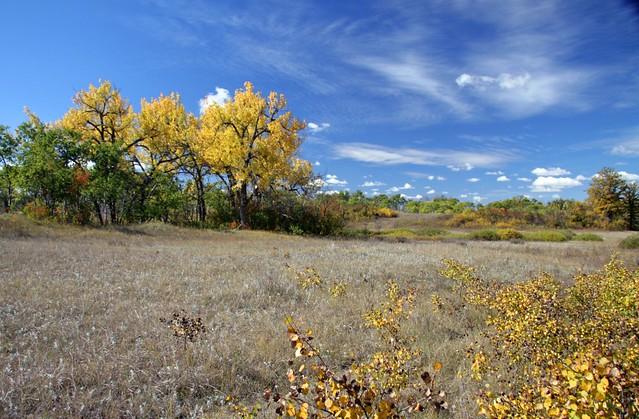 North Dakota by CC user usfwsmtnprairie on Flickr