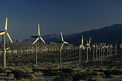 Windfarm Palm Springs California