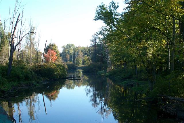 Oak Orchard Creek Oak Orchard Creek At Iroquois National