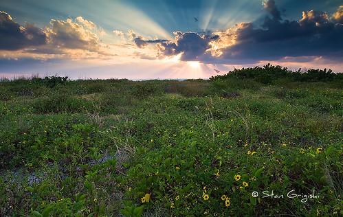 florida sunsets bowmansbeach bowmans beachsanibel islandfloridaflorida