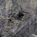 Small photo of Devonian Karst