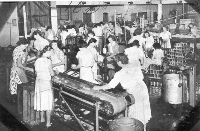 women in the post industrial society Role of women in japan  the traditional expectations of women by increasing industrial jobs  more than men in japanese society women still control the .