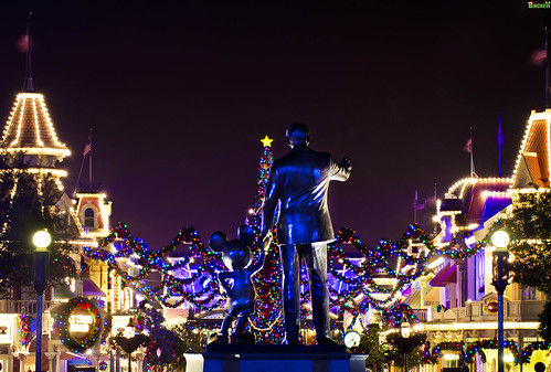"""It's a Kingdom of Lights during this Season, Mickey"""