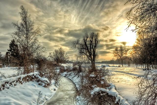 Winter Meadow 01