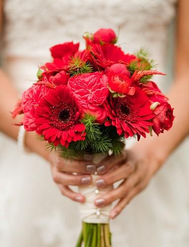 Il rosso porta fortuna dell anno fiorista mariangela blog - I porta fortuna ...