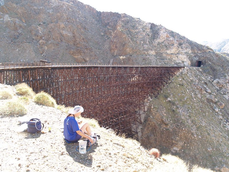 Lunchtime at the Goat Canyon Trestle