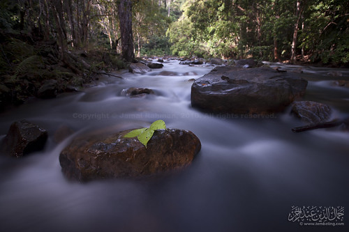 river leaf stream slowshutter tropica endaurompin cottoneffect lubuktapah