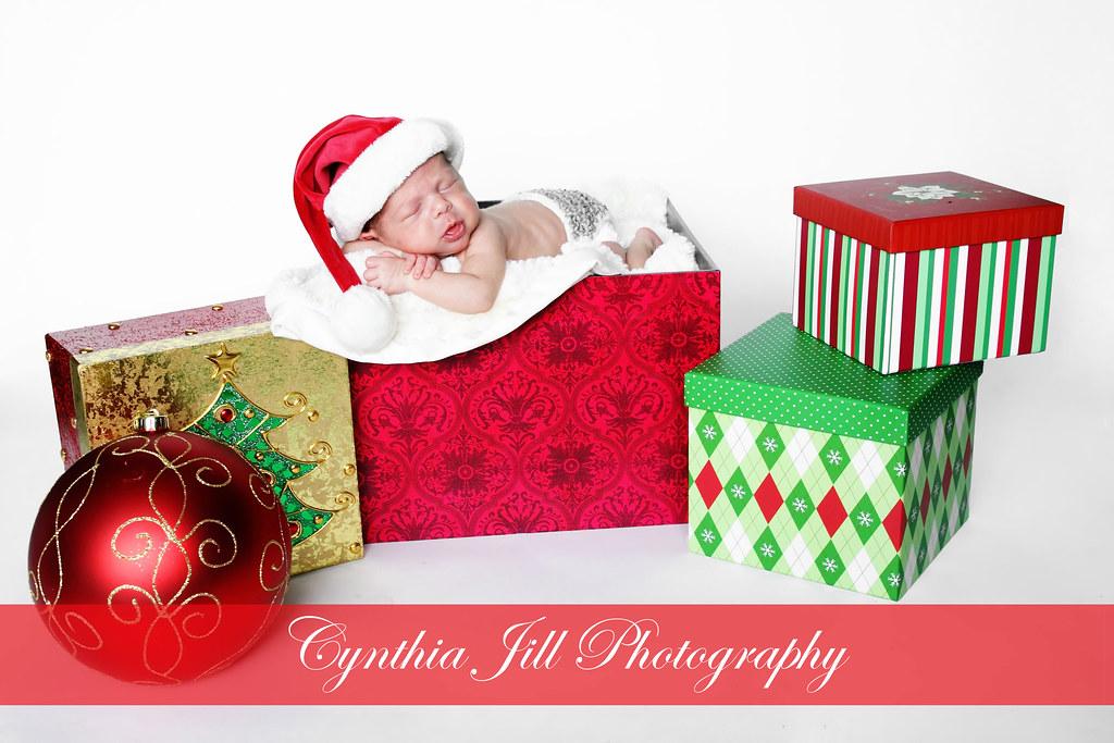 Early Christmas Present.An Early Christmas Present Website Cynthiajillphotography
