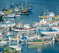 fishing boats, portugal
