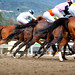 ...and they're off! - Santa Anita Racetrack - Opening Day 2011 by Chris28mm