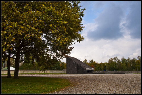Dachau from life of J.D. Salinger