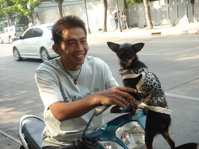 Man with Dog Pimboon