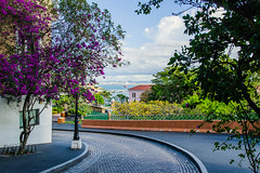 From Calle Tetuan, take the narrow curved street, Calle Recinto Sur, along city wall for vista views of San Juan Bay