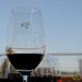 Wine Tasting at Tempus Alba Winery - Mendoza, Argentina