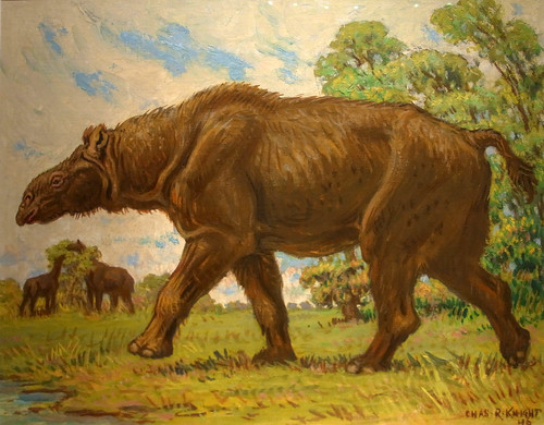 Indricotherium(largest land mammal ever) by Charles Knight at the Los Angeles Museum of Natural History 175A