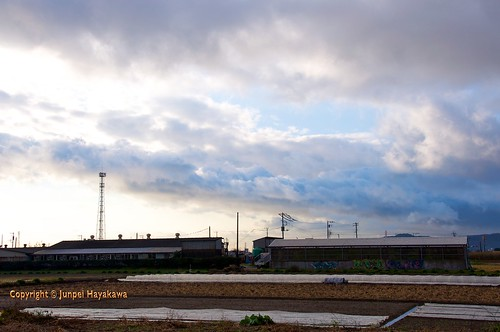 sky japan clouds sunrise fields farms crops agriculture kanagawa hiratsuka