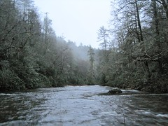 Fording the Chattooga on New Year's Day, 2011.