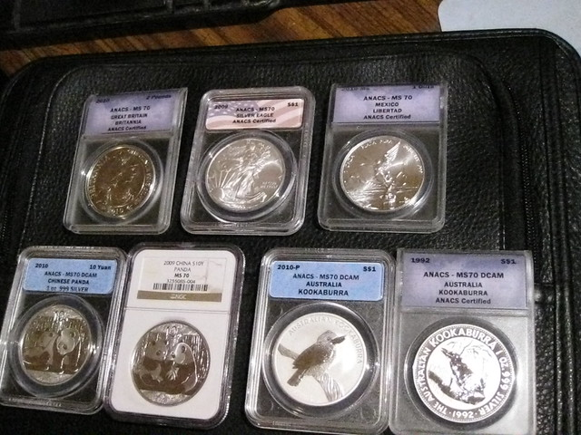 all MS-70 (graded perfect), all pure silver bullion