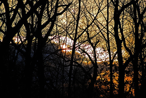 winter light sunset orange snow cold tree art wisconsin digital canon dark eos rebel frozen brads t1i