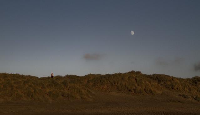 Ocean Beach, (2010)