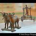 Metal Cart, Mohenjodaro, Indus Valley Civilization
