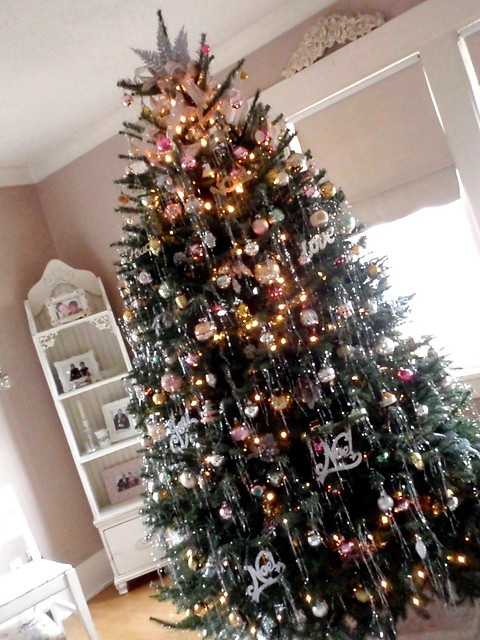 Christmas Tree Farm Victoria