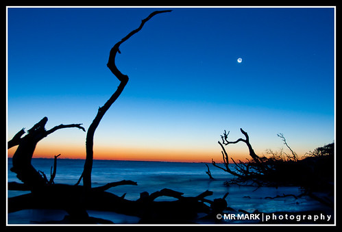 The Bluffs, Big Talbot Island State Park, FL