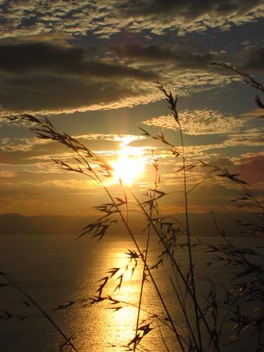 travel newzealand summer landscape scenery nz northisland gisborne eastland