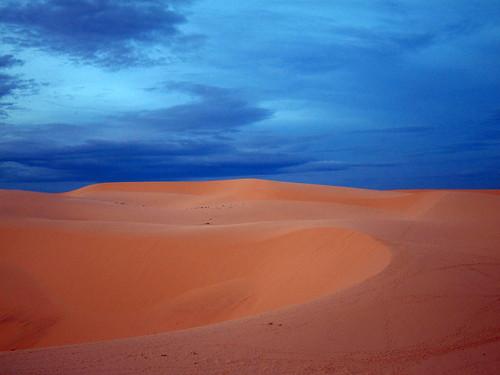 Vietnamese Sahara