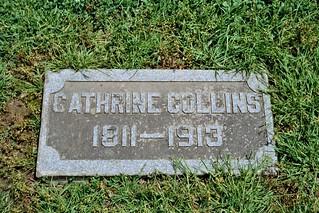 Catherine Dwyer-Collins