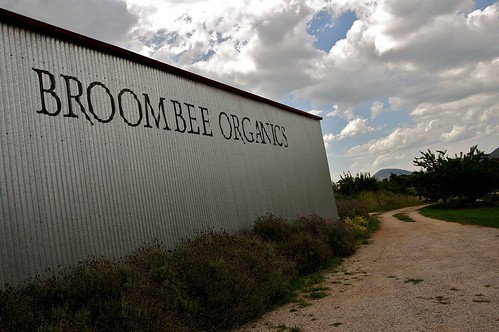 Broombee Organics Winery, Mudgee - 1