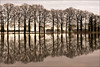 Reflections on flooded farmland by Foto Martien