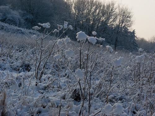 Smestow valley snowy landscape