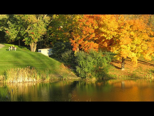 autumn ny newyork reflection fall colors yellow canon bench pond couple foliage patterson powershotsd1200is