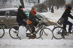 Snowstorm Coolicious - Winter Cycling in Copenhagen
